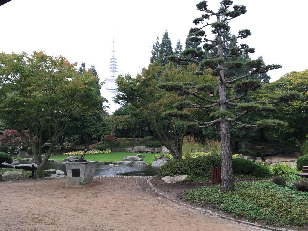 Japanischer Garten - im Hintergrund der Fernsehturm